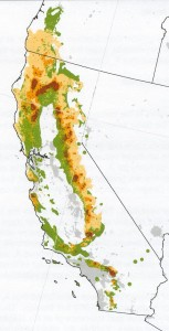 areas of California in which oaks are at risk to GSOB